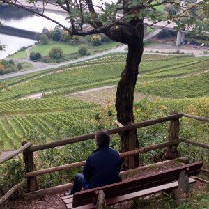 Ausblick über die Weinberge