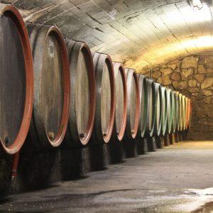 Weinkeller Moselurlaub